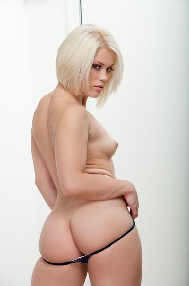 Pornstar Ash Hollywood - 69 videos by Naughty America