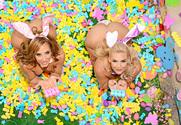 Phoenix Marie & Richelle Ryan & Johnny Castle in American Daydreams