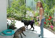 Mia Rose & Alex Gonz & Vincent Vega in My Sister's Hot Friend
